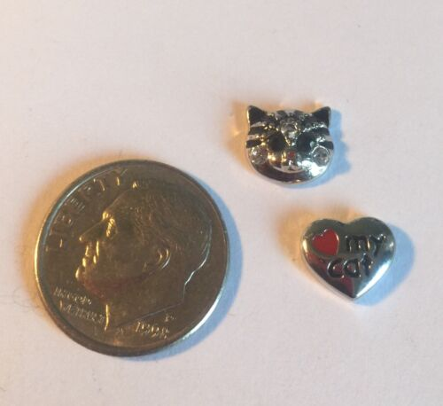 Crazy Cat Lady Charm  Vet Pet Animal Charm Fits Origami Owl Locket Love Heart