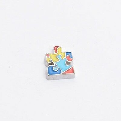 Puzzle Piece Heart Autism Awareness Silver 8mm Floating Charm for Memory Lockets