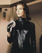 "Diana Rigg The Avengers 10"" x 8"" Photograph no 42"