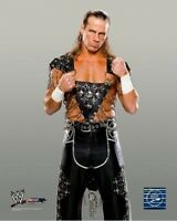 Autographed Shawn Michaels 16 X 20 Photo Print Wwe Wwf Dx Hbk