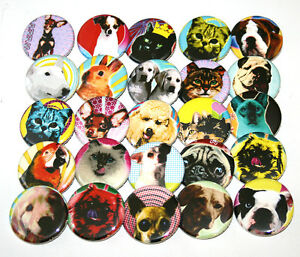 POP-ART-DOGS-CATS-ANIMALS-BADGES-x-25-Button-Pins-Bulk-Wholesale-Lot-32mm-1-25-034