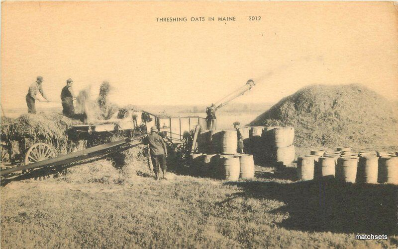 Agriculture Farming 1930s Threshing Oats American Art postcard 8947