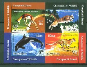 Rumaenien-Romania-2015-Tiere-Springbock-Gepard-Schwertwal-Puma-Block-613