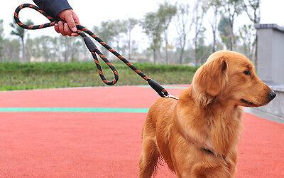Klettergurt Hund : Hund kollektion erkunden bei ebay