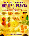 The Encyclopedia of Healing Plants: A Guide to Aromatherapy, Flower Essences and Herbal Remedies by Chrissie Wildwood (Hardback, 1998)