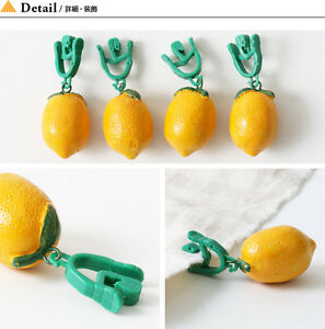 Image Is Loading NEW LEMON TABLECLOTH WEIGHTS SET OF 4 CLIP