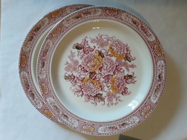 Staffordshire Ironstone  Dinner Plates. Canterbury Ridgway. 2 pcs