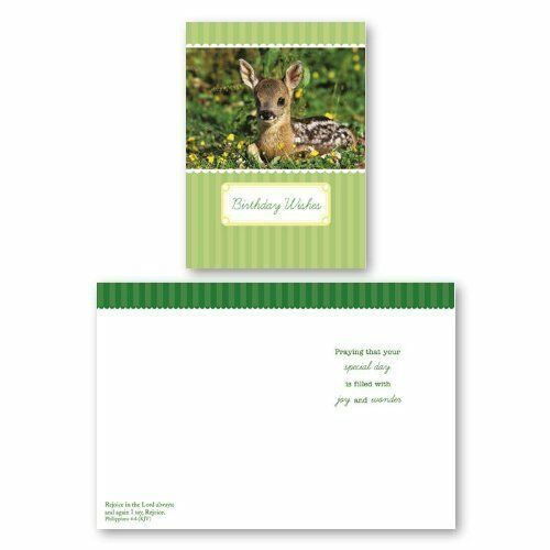 Buy Assorted 12 Pack Boxed Animal Birthday Cards BULK For Kids With KJV Scripture