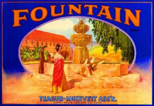 Santa Paula Fountain Lemon Citrus Crate Label Art Print