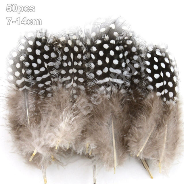 New 50pcs spotted Guinee Feathers Brown 7-14cm DIY Wedding Craft Decoration