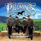 Me Enamore de un Angel by Los Palominos (CD, Jun-2008, South Central Music)