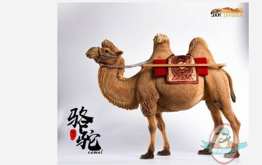 1 6 Bactrian Camel Simulation Animal Model Jxk005 A