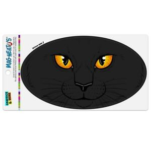 Black-Cat-Face-Pet-Kitty-Car-Euro-Oval-Magnet