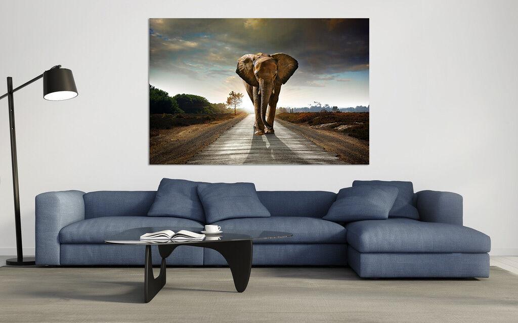 3D Himmel Elefanten 574 Fototapeten Wandbild BildTapete AJSTORE DE Lemon