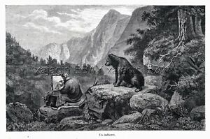 Artist Landscape Wildlife Painter Observed by Bear 1860s Engraving Antique Print