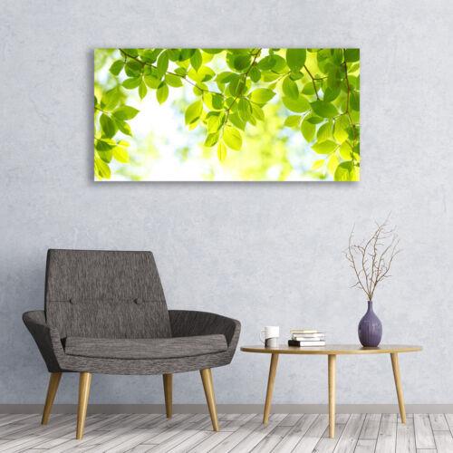 Leinwand-Bilder Wandbild Canvas Kunstdruck 120x60 Blätter Natur