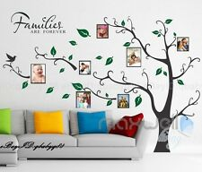 Family Picture Photo Frame Tree Wall Quote Art Stickers Vinyl Decals Home Decor