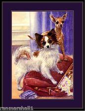English Print Papillon Chihuahua Dog Art Picture