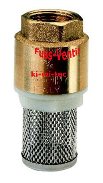 "Messing Fußventil Rückschlagventil Rückflussverhinderer, Filterkorb, 1/2 bis 2"""