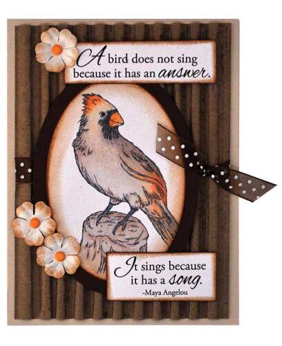 BIRD Perching Birds Clear Unmounted Rubber Stamp Set INKY ANTICS 11113MC New