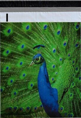 Green Peacock 1-1000 10x13 Boutique Designer Poly Mailer Bags Fast Shipping