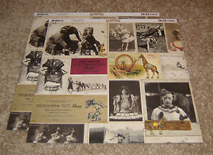Bo Bunny Double-Sided Paper(2) ~ Carnival Collection....<wbr/>..Big Top.
