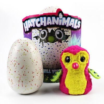 Pet Toy Hatchimals Pengualas Draggles Owlicorn Sealed Interactive Kids Gift Xmas