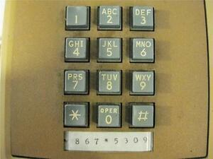 867-5309-Jenny-Domain-Name-for-Sale