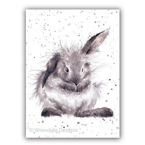 - WD-C-ACS068 Rabbit Wrendale Designs Greeting Card BATH TIME
