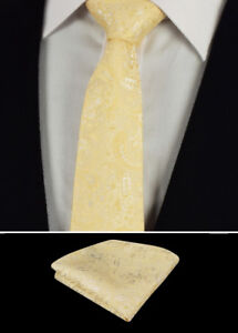 4f0a84f3a566 Image is loading Champagne-Cream-Mens-Tie-Handkerchief-Silk-Floral-Pocket-