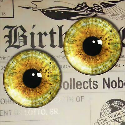 Red Glass Cat Eyes Realistic Taxidermy Doll Eyeballs 15mm