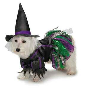 Details About Dog Puppy Halloween Costume Scary Witch Zack Zoey Xs