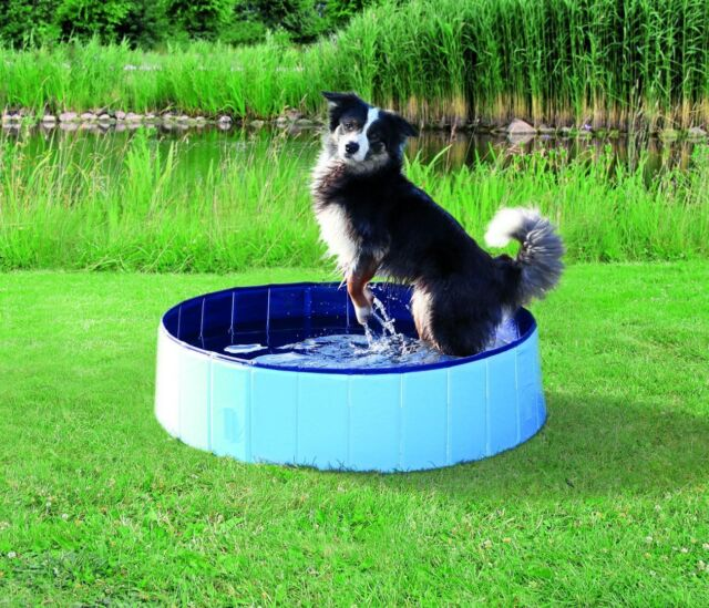 Trixie Dog Pool, Light Blue/Blue, Various Sizes
