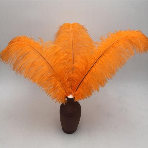 High quality ostrich feather 10pcs//50 pcs//100pcs 6-24 inches 15-60 cm wedding