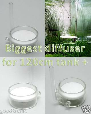 Pollen Glass CO2 diffuser japanese ADA style beetle planted aquarium 5cm big