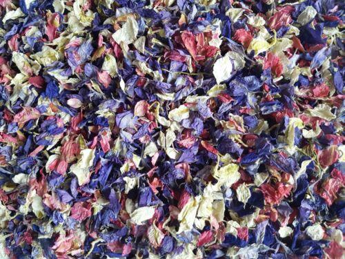 Pink /& Cream Real Petal Delphiniums Bulk Biodegradable Wedding Confetti Purple