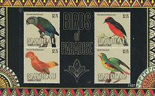 Mayreau Grenadines St Vincent 2011 MNH Birds of Paradise II 4v M/S Finch Parrot