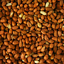 thumbnail 2 - SQUAWK Whole Peanuts - Fresh Premium Wild Garden Bird Seed Food Nut Energy Feed