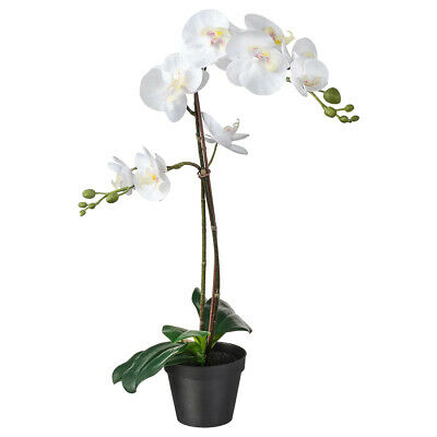 IKEA FEJKA Topfpflanze, künstlich, Orchidee weiß ...