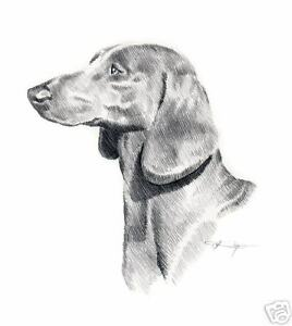 DACHSHUND-4-Pencil-Drawing-Dog-8-x-10-ART-Print-Signed-DJR