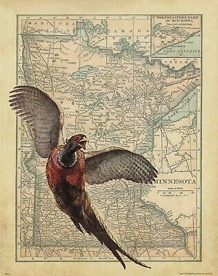 Pheasant Hunting Vintage Minnesota State Map Print Forever Banquet Wall Artwork