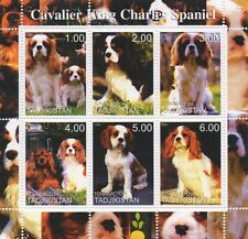 CAVALIER KING CHARLES SPANIEL DOG ANIMAL TADJIKISTAN 2000 MNH STAMP SHEETLET
