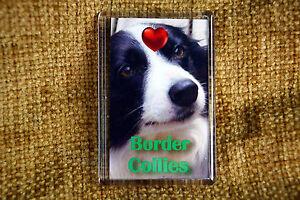 Border-Collie-Gift-Fridge-Magnet-77x51mm-Birthday-Gift-Xmas-Stocking-Filler