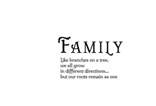 Family like branches on a tree Wall Stickers Home decor Decals Quote UK zx64
