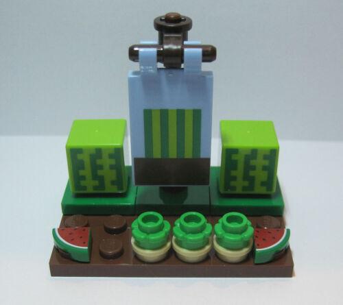 LEGO Minecraft 21138 Melonenbeet unbespielt