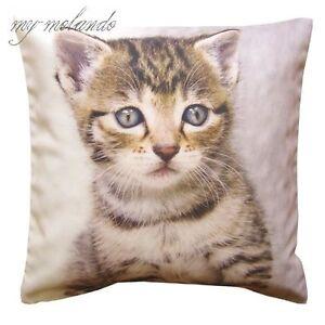 Dekokissen Kissenhülle Kissenbezug Fotodruck Katze und Hund  40x40 cm