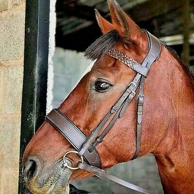 EXTRA FULL SIZE HUNTER STYLE BRIDLE BLACK LEATHER COMPLETE WITH REINS XF