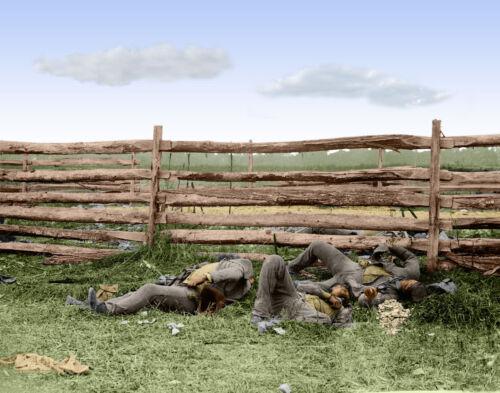 Dead Stonewall Jackson/'s Brigade Antietam MD Color Tinted photo Civil War 03561