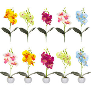 Preferences-Orchidee-Pseudo-plante-Fleur-artificielle-Simulation-flower