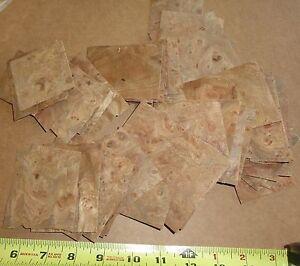 Carpathian Elm Burl wood veneer sample pack of 60 pieces raw with ...